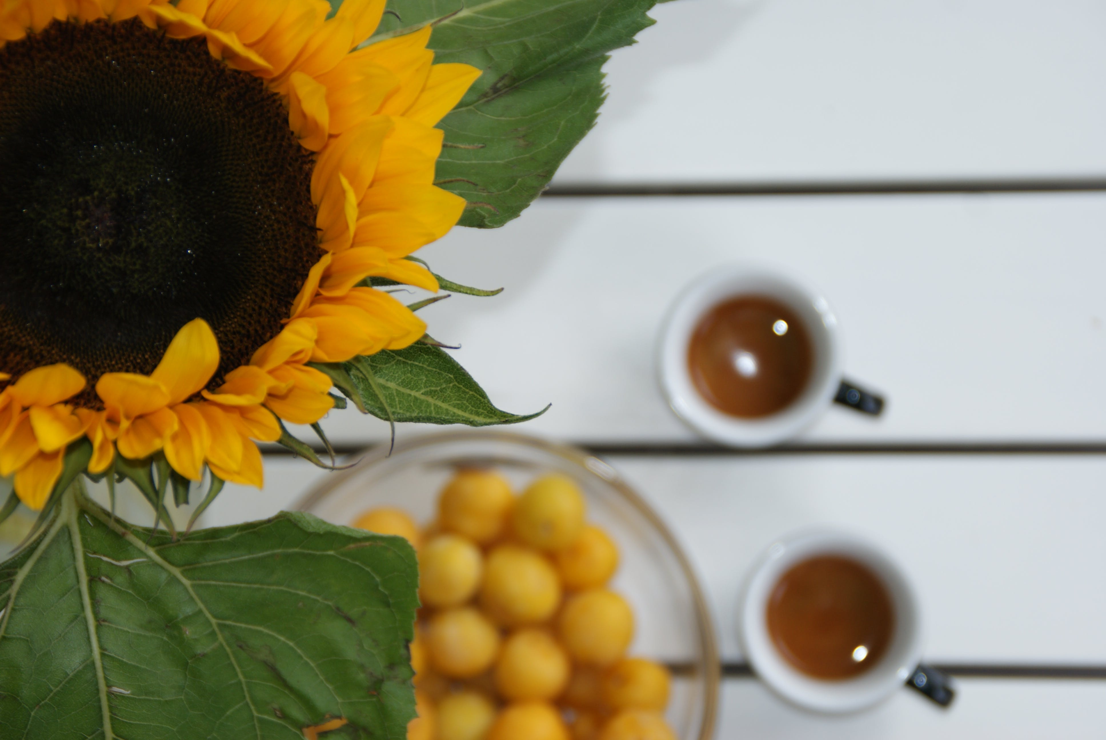 Free stock photo of beautiful, coffee bean, coffee relax, designer