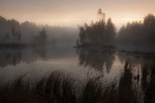 Fotos de stock gratuitas de a orillas del lago, agua, al aire libre, anochecer