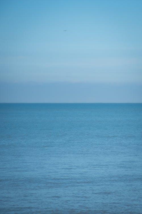 Free stock photo of beach, blue, football