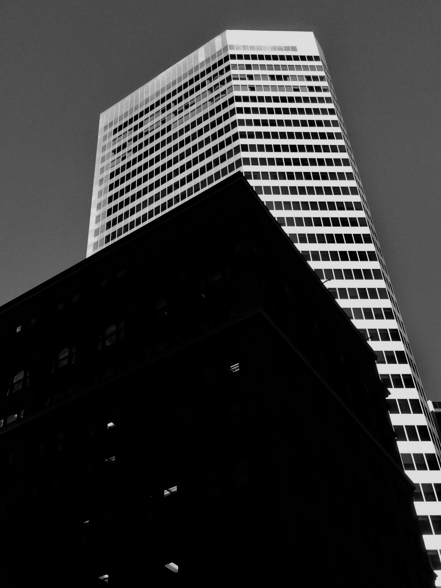Free stock photo of building, city, contrast, light