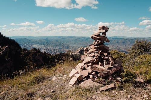 Foto profissional grátis de ao ar livre, árvores, aumento, cadeia de montanhas