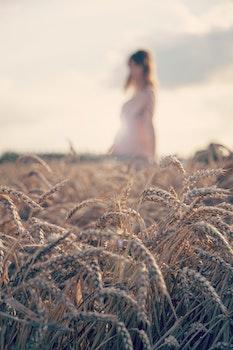 Woman in the Fields