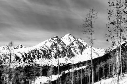 Snowy Mountain View in Monochrome Photo