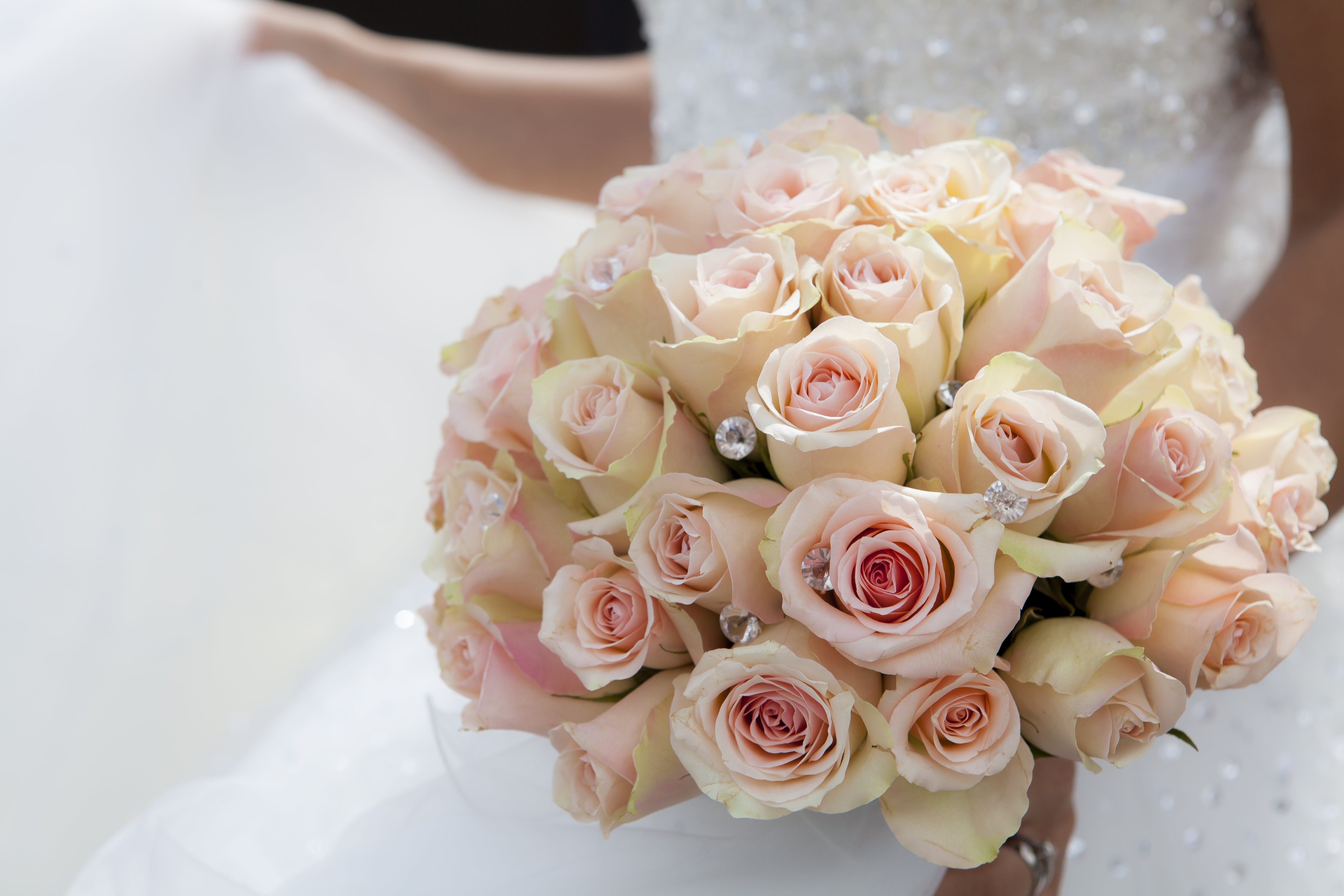 Close-up of Pink Rose Bouquet