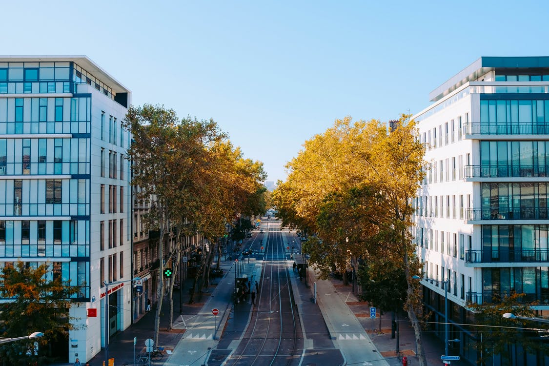 High Angle Shot Of A City Street Lined With Trees Between Two Modern Buildings