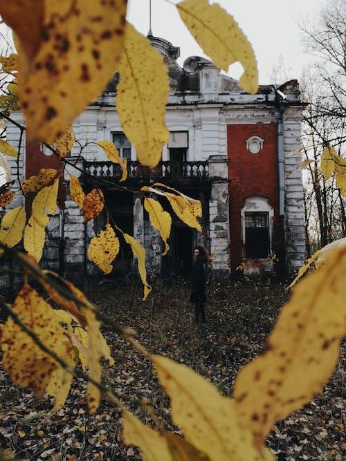 Darmowe zdjęcie z galerii z jesień, opuszczony, opuszczony budynek, rosja