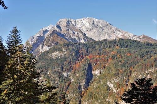 Foto profissional grátis de montanha