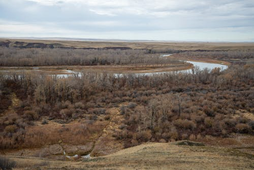 Imagine de stoc gratuită din blackfoot nation, Canada, prairile canadiene, siksika nation