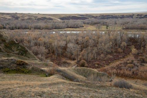 Imagine de stoc gratuită din blackfoot, blackfoot nation, pământ natal, prairile canadiene