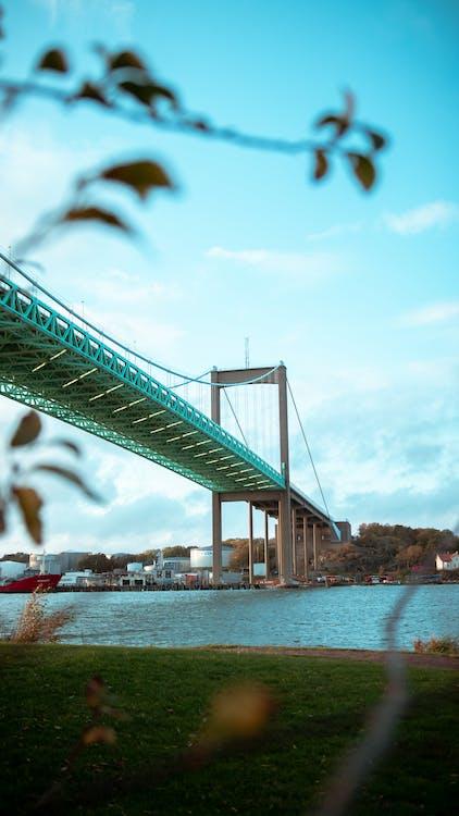 Free stock photo of blue, bridge, nature