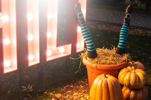 Photo of Halloween Decorations