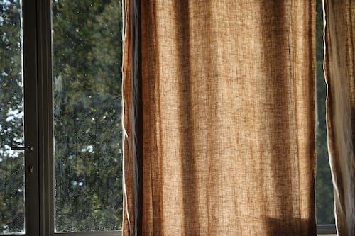 Ingyenes stockfotó ajtó, ajtó-gomb, barna szín, bézs témában