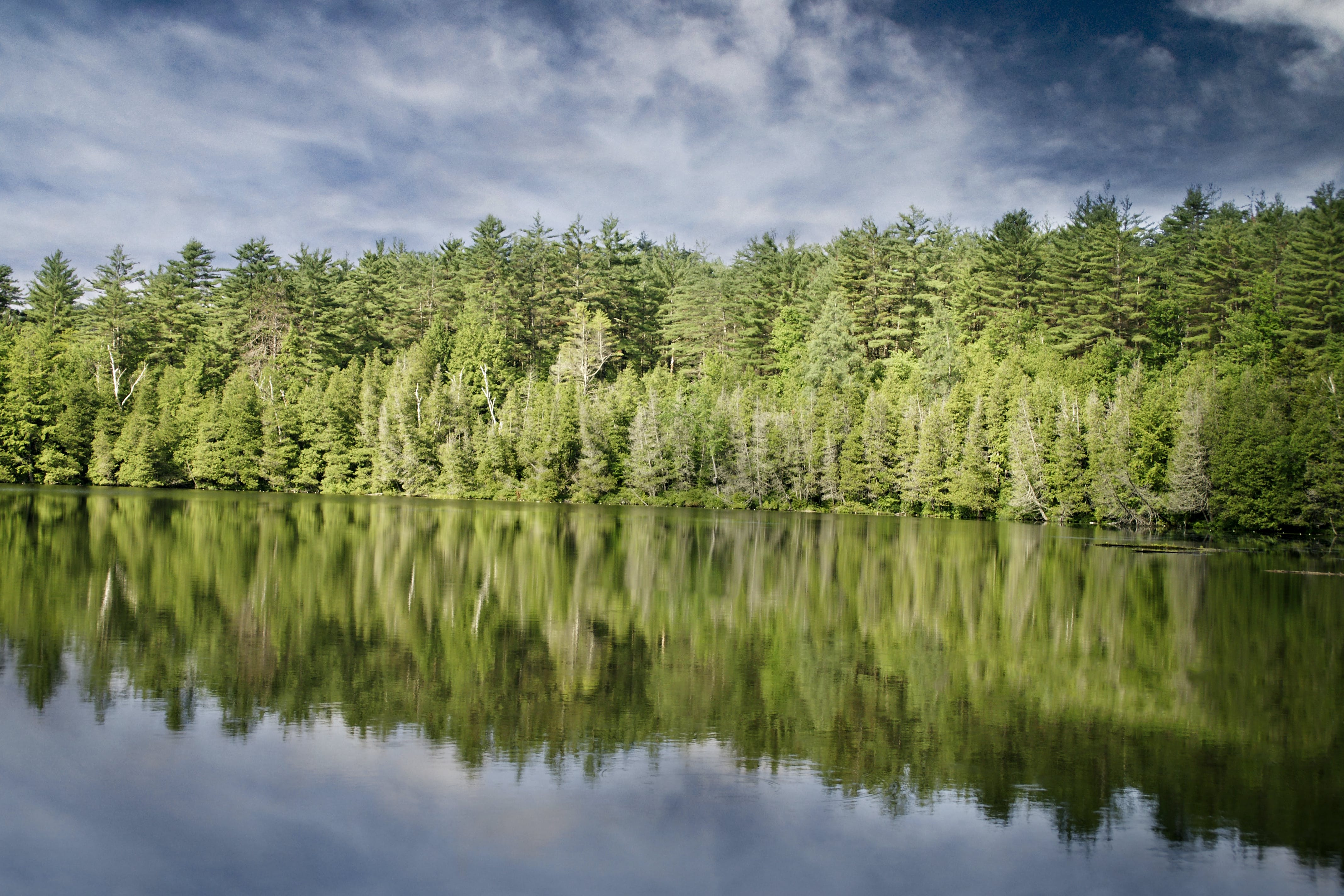 Calm Body of Water Near Green Leafed Trees Under Clouded Sky