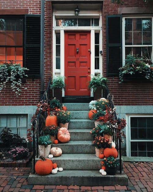 Pumpkins on Stairs in Front of A Door
