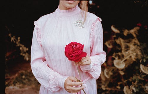 Crop Photo of Woman in Pink Long-sleeved Dress Holding Red Flower