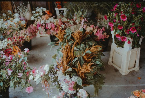 Flowers on White Wooden Flower Pot