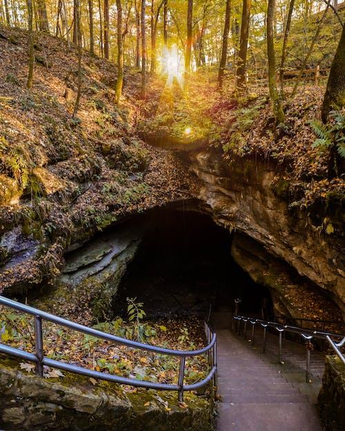 Immagine gratuita di autunno, grotte, kentucky, meraviglioso