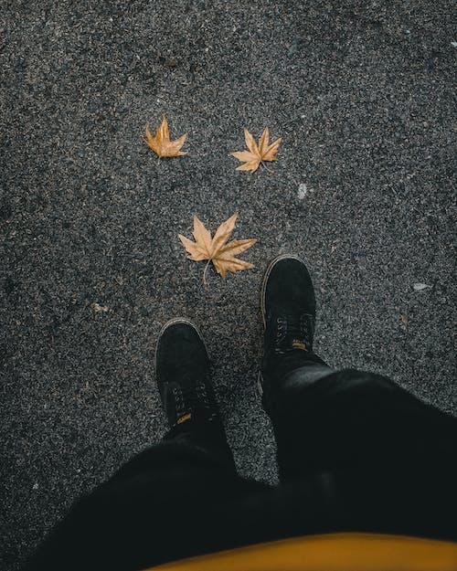 Person Stehend, Die Schwarze Jeans Trägt