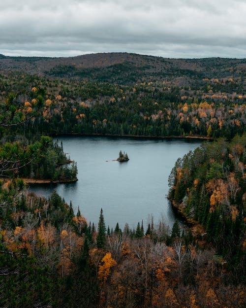 Gratis arkivbilde med innsjø, landskap, skog, trær