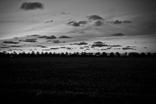 Gratis stockfoto met bw, bw-fotografie, landschap, natuur