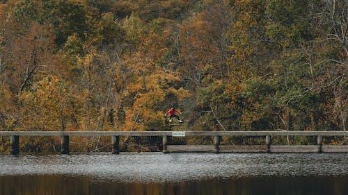 Free stock photo of action, bridge, contrast, dam