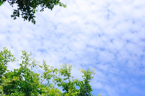 Gratis arkivbilde med blå himmel