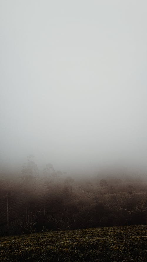 Free stock photo of cloud, fog, foggy, landscape