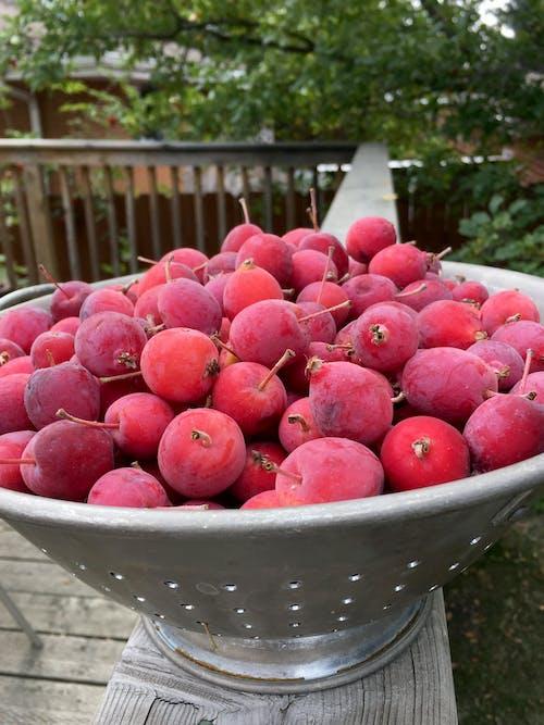 Imagine de stoc gratuită din crab mere