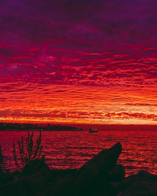 Foto profissional grátis de atardecer, céu com cores intensas, céu noturno, lindo pôr do sol