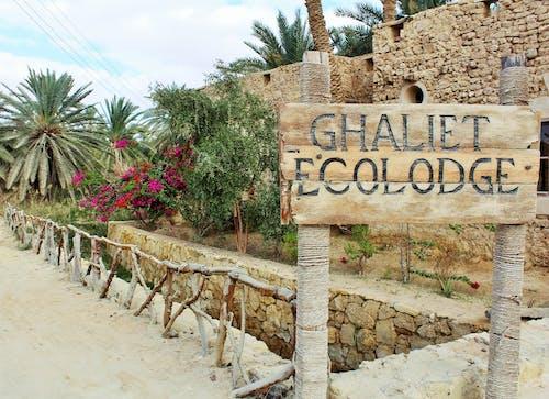 Kostenloses Stock Foto zu ecolodoge hotel, natürliche schönheit, siwa-oase