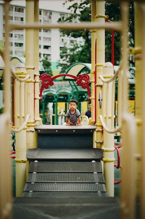 Free stock photo of 35mm film, baby, film photography, happy