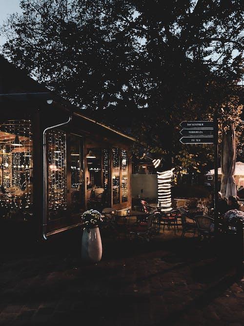 Gratis stockfoto met architectueel design, architectuur, avond, bloemen