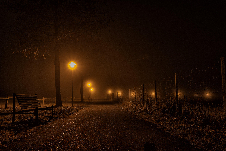 Free stock photo of light, nature, lights, night