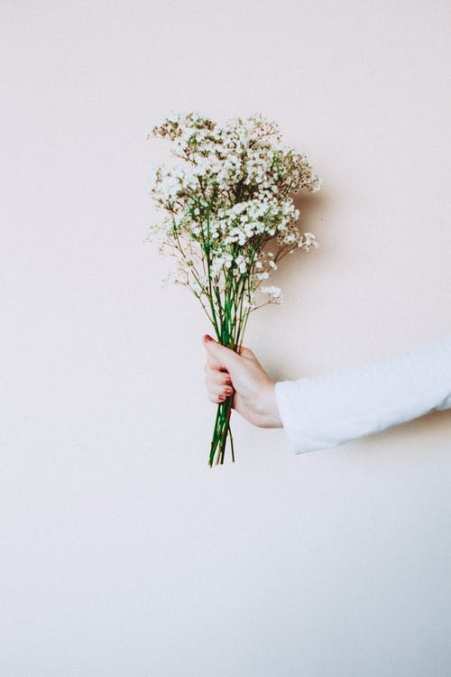 Photo of Woman's Hand Holding Out White Flowers In Front of White Background