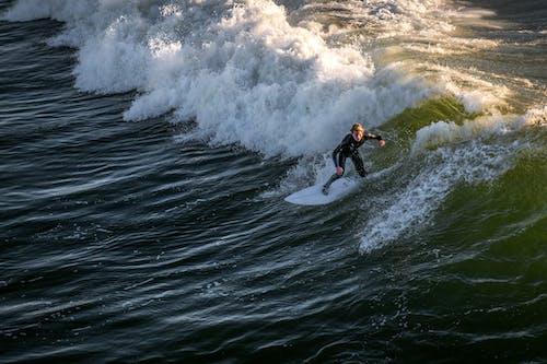 dalga, deniz, kişi, okyanus içeren Ücretsiz stok fotoğraf