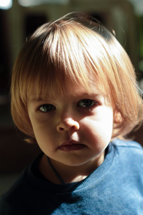 Free stock photo of small child