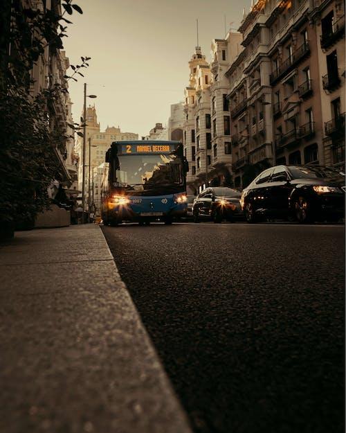 Free stock photo of bus, car lights, city