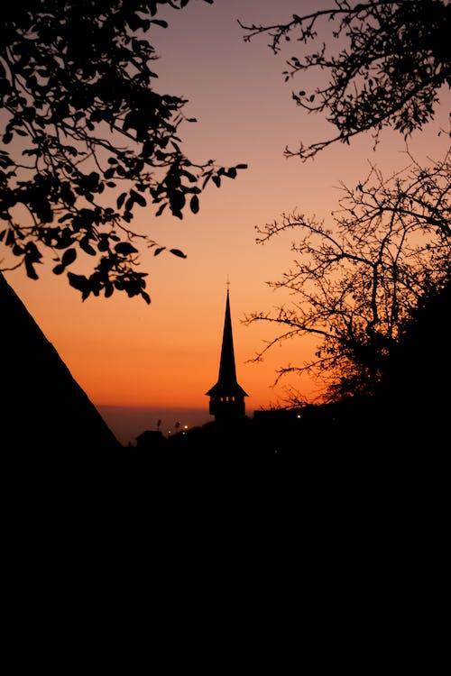 Ingyenes stockfotó alkonyat, ég, fák, hajnal témában