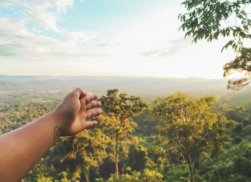 Fotobanka sbezplatnými fotkami na tému arengvalley, kambodža, kohkong, krásna krajina