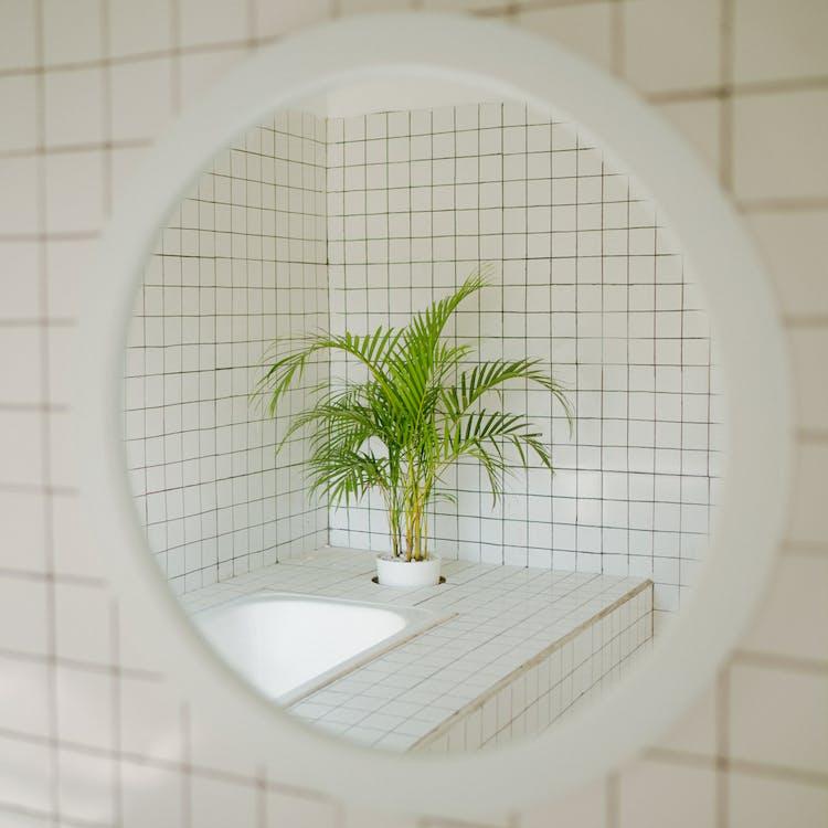 a l'aire lliure, arquitectura, bany