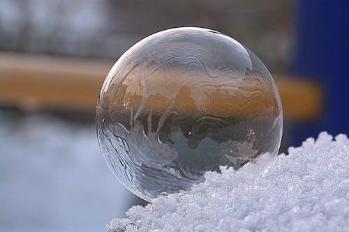 Základová fotografie zdarma na téma bublina, čirý, dřevo, koule