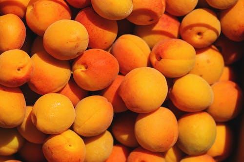 Gratis arkivbilde med appelsin, aprikos, avling, bakgrunn