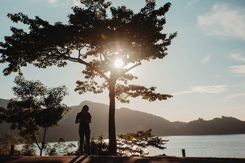 altın rengi Güneş, Filipinler, güzel gün batımı, güzel manzara içeren Ücretsiz stok fotoğraf