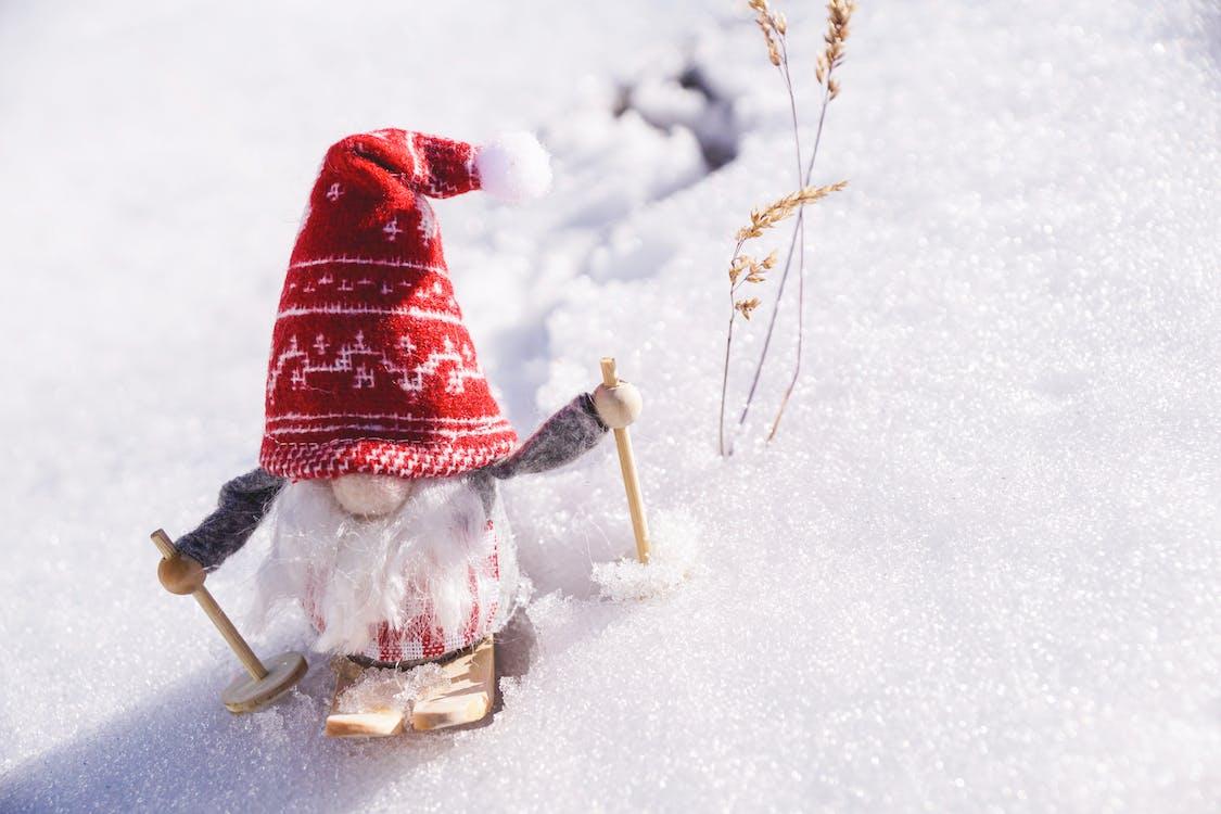 Gnomo Nano Sulla Neve