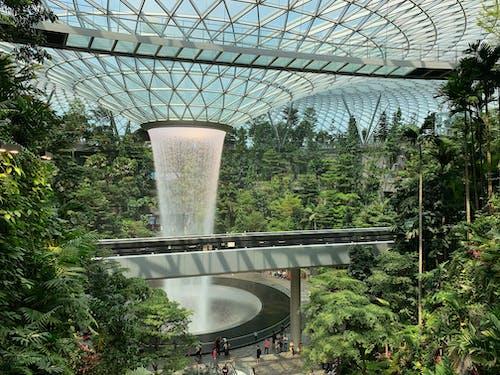 Бесплатное стоковое фото с архитектура, здание, мост, парк