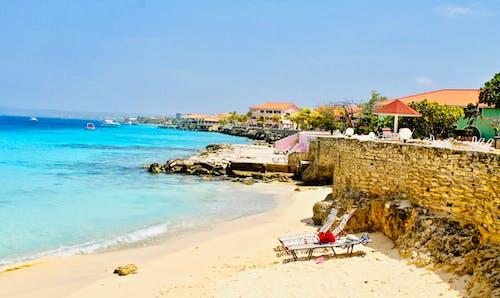 Foto d'estoc gratuïta de Carib, colorit, dia assolellat, gandules