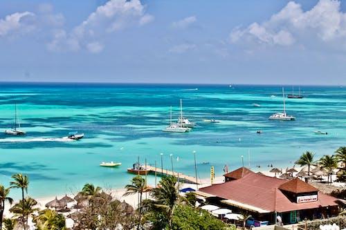Foto d'estoc gratuïta de Carib, iots, mar carib, palmeres