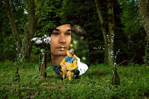 Foto stok gratis Daun-daun, ekspresi muka, hutan, laki-laki