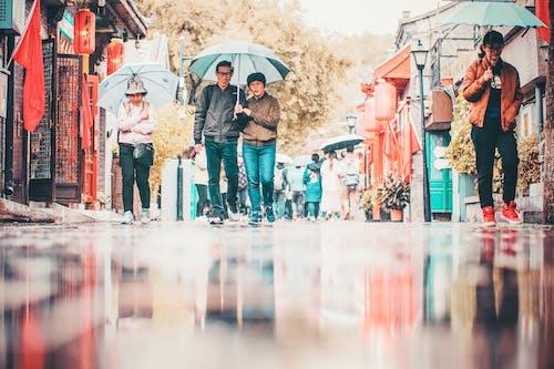 People Walking on Street Holding Umbrellas