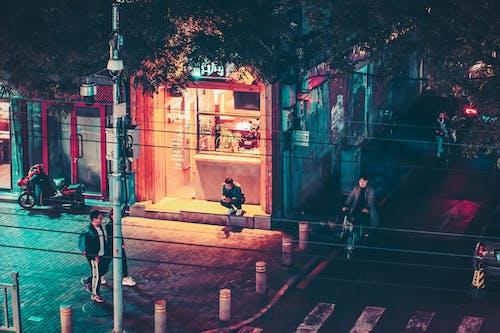 Foto profissional grátis de alvorecer, árvore, bicicletas, cair da noite